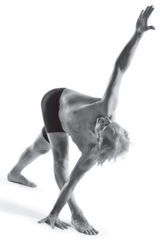 francois raoult triangle pose